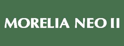 モレリア ネオ 2